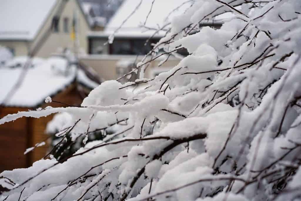 20 Indoor Winter Activities for Kids