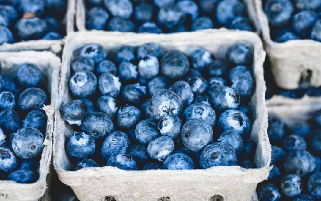 Healthy Eating Summer Tips