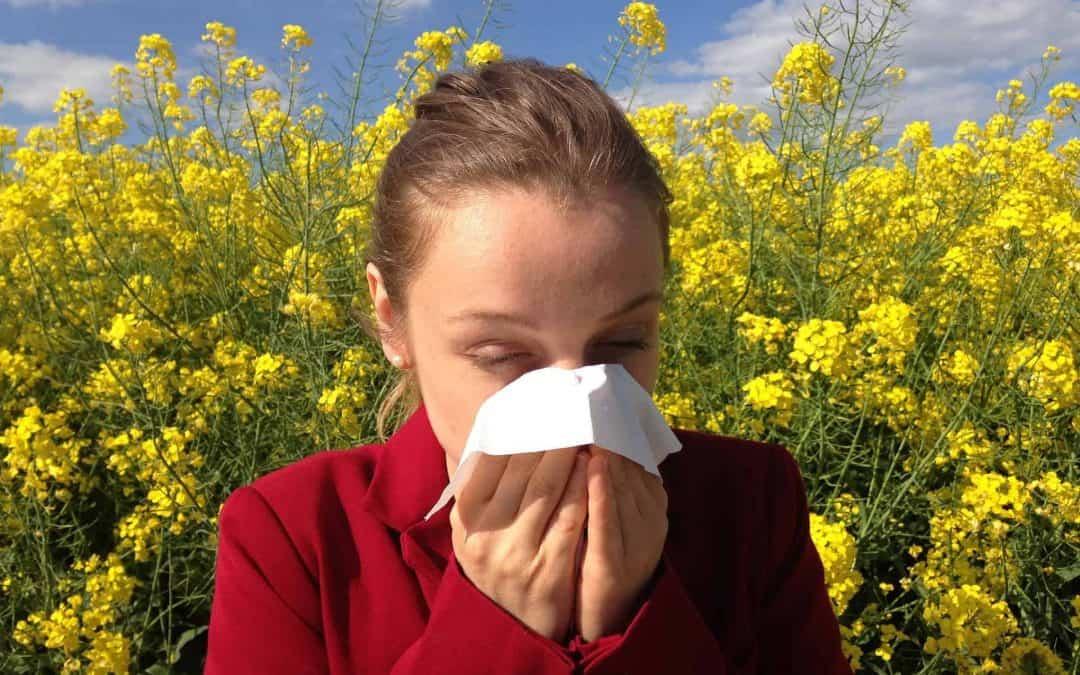 Chiropractic Care for Seasonal Allergies