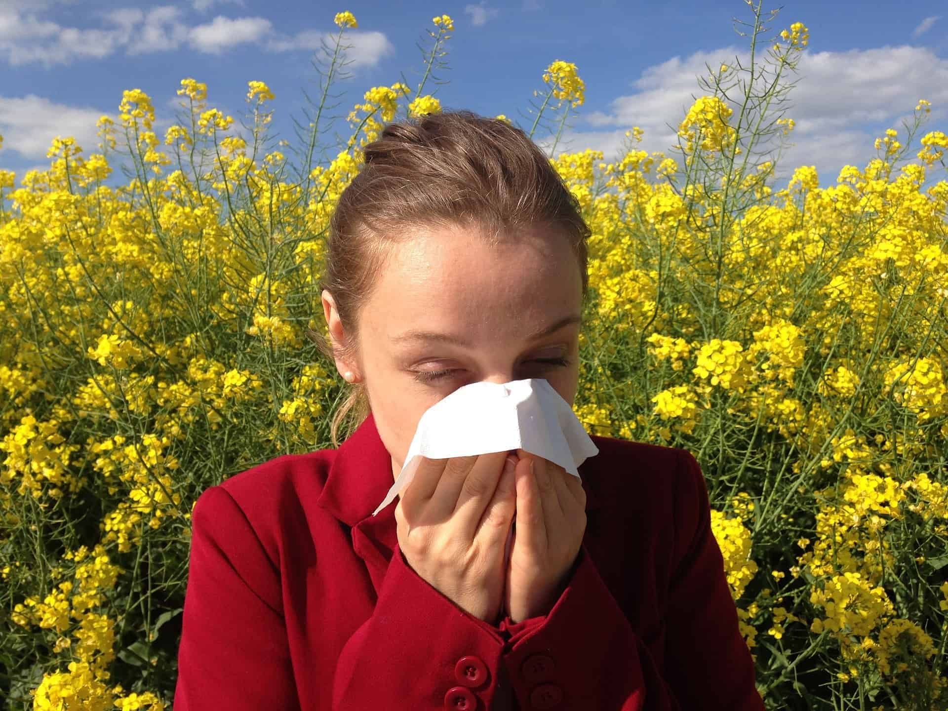 Chiropractic Care for Seasonal Allergies