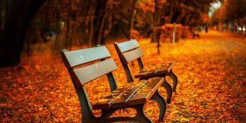 Fall Festivals in Franklin, TN